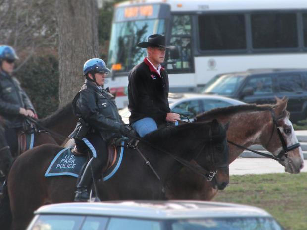ryan-zinke-horse