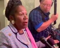 Is Sheila Jackson Lee Officially The 'Dumbest Member Of Congress' For Saying THIS About AR-15s? (Video)