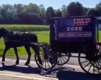 WATCH: Amish And Mennonite For Trump Parade Is Nothing Like You've Ever Seen Before!