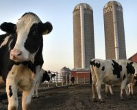 UNCONSTITUTIONAL: Biden's Bigoted Farm Aid Package Gets Fish-Slapped By Judge