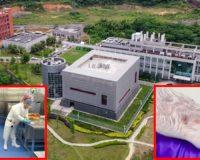 DEAR CNN: Wuhan Lab Created Coronavirus '10,000 Times Stronger Than Usual' — Is THAT News?